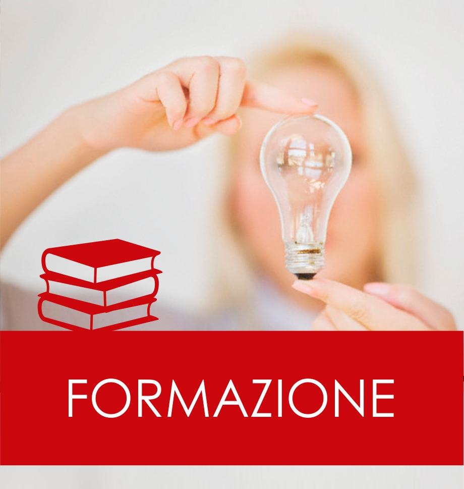 SIC FORM-1