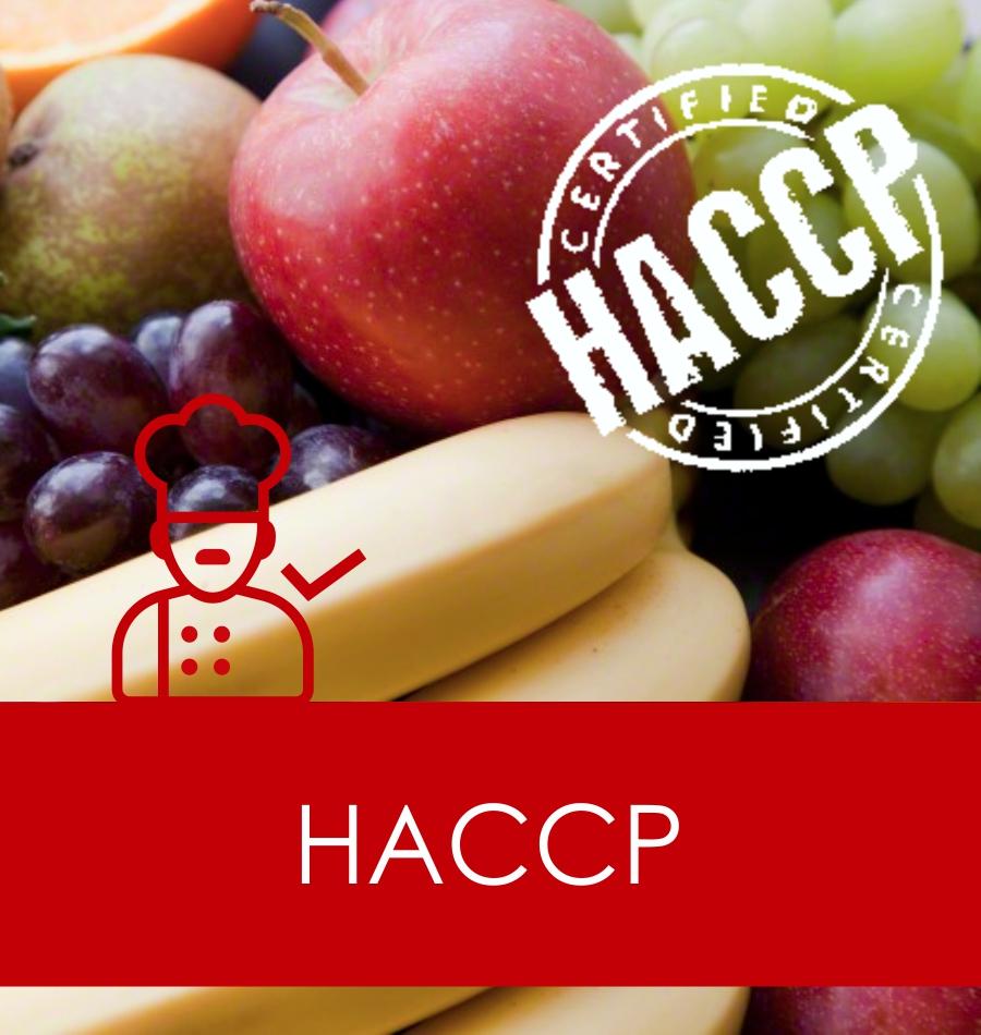 sic haccp
