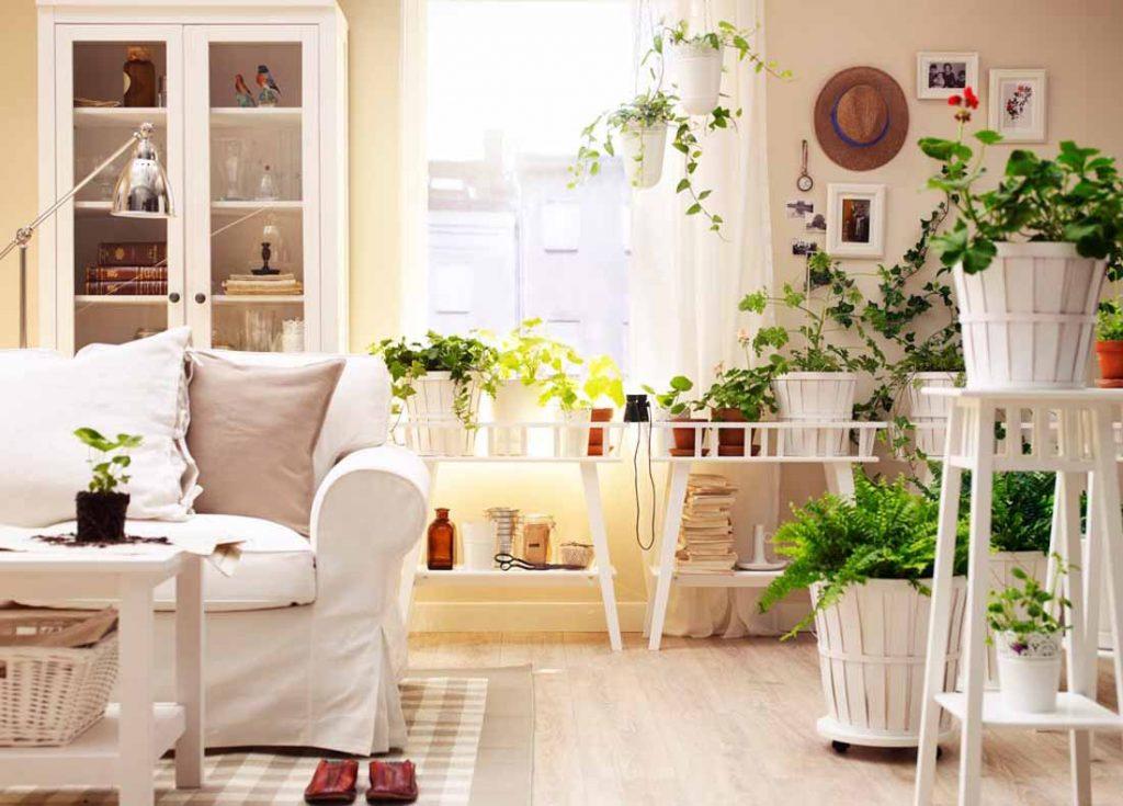 Inquinamento indoor: come migliorare la qualità dell'aria nelle abitazioni