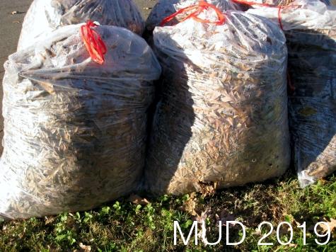 Mud semplificato con rifiuti conferiti a destinatari nazionali